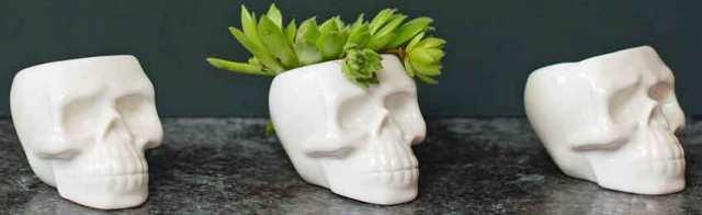 Mini skull plant pots from MiaFleur