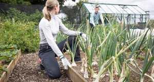 Genus Performance Gardening Trousers