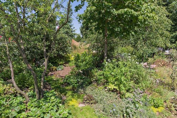 RHS Hampton show gardens