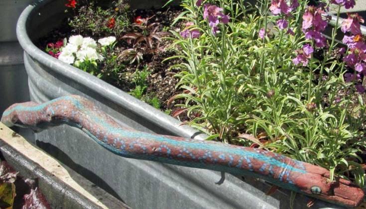 Stick painted like a snake