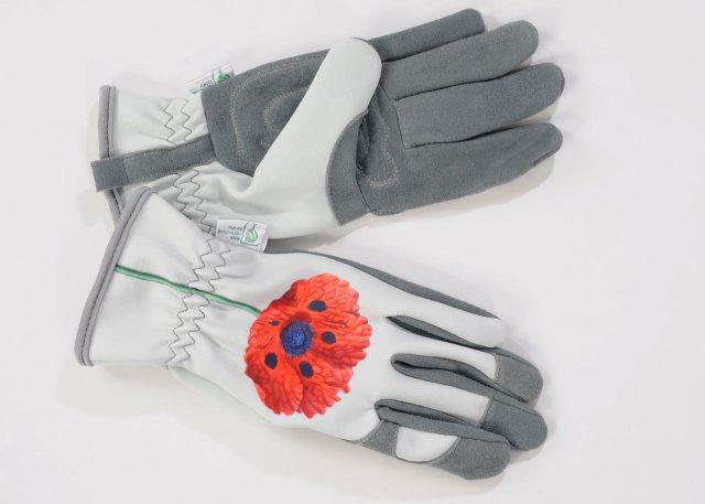 RHS Chelsea Gold Leaf gloves. Picture; Gold Leaf Gloves