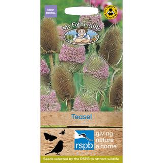 Mr Fothergill's RSPB Teasel seeds. Picture; Mr Fothergill's