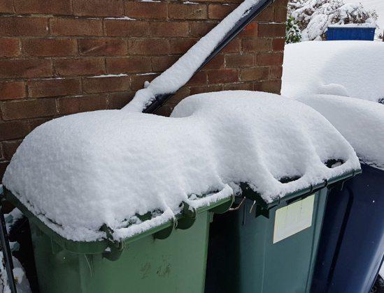 It's bin day tomorrow...