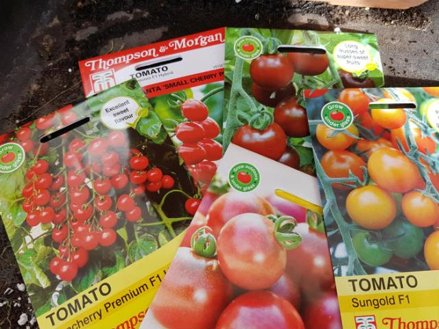 2018's tomato seeds - a colourful lot