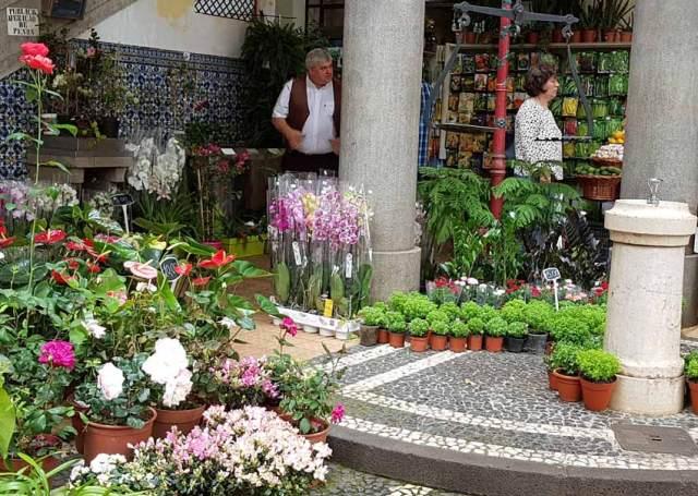 One of the plant stalls, Mercado dos Lavradores, Funchal, Madeira