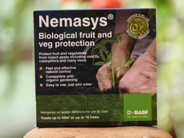 Nemasys nematodes. Picture; BASF