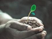Support World Soil Day, December 5