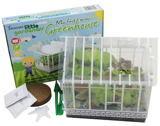 Little Gardeners' Mini Greenhouse. Picture; Johnsons