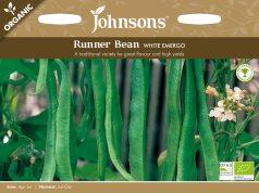 Runner Bean White Emergo (Organic). Picture; Johnsons