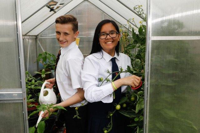 Last year's category winners from St Gregory's School. Picture; RHS/Luke Macgregor