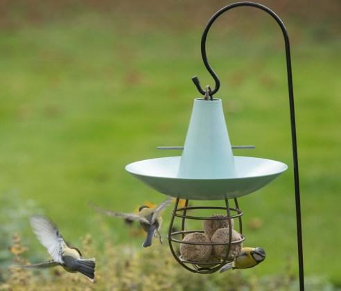 Fat snax feeder in eau de nil. Picture; Crocus