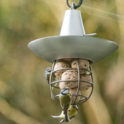 Fat snax feeder in brushed aluminium. Picture; Crocus