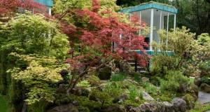 Green Switch by Kazuyuki Ishihara. Picture; RHS/Tim Sandall