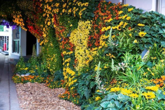 Mc Queen's Flowers Per Oculus Apum installation. Picture; JE Communications