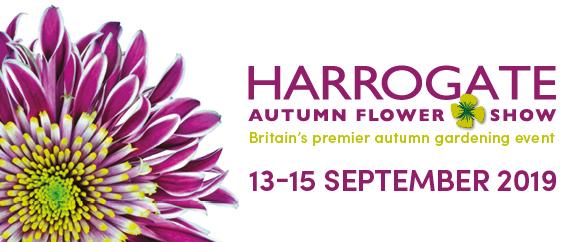 Harrogate Autumn Flower Show logo