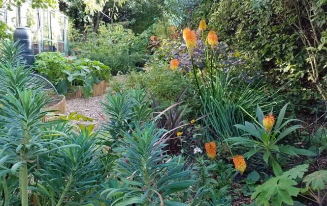 Garden overview, Sept 17