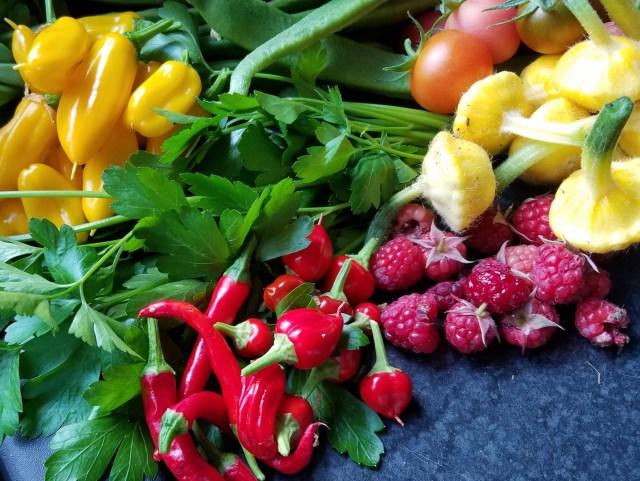 Home-grown fruit and veg
