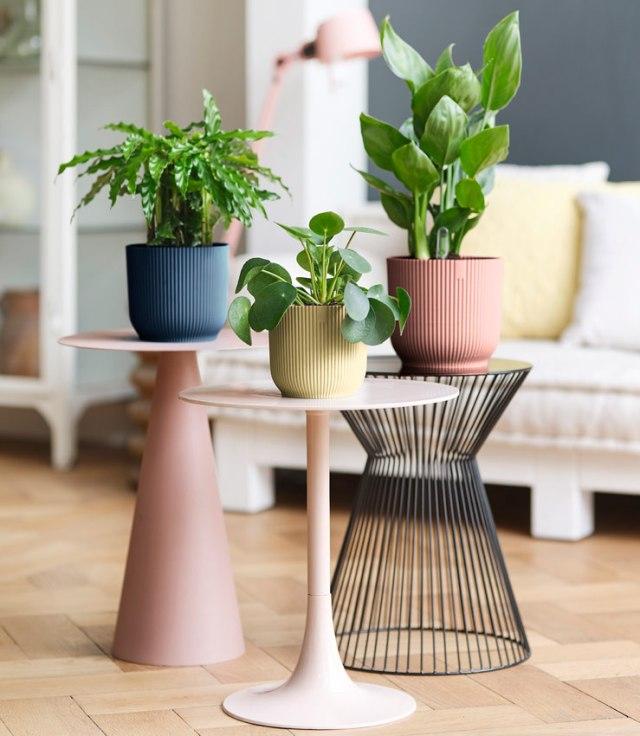 Vibes planter range. Picture; elho