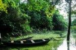 Aventures en Amazonie