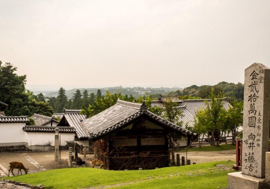 que faire à Nara