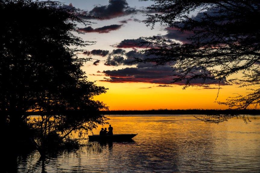 Safari au parc Chobe