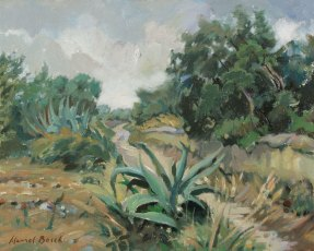 Agave's road. Mont-roig