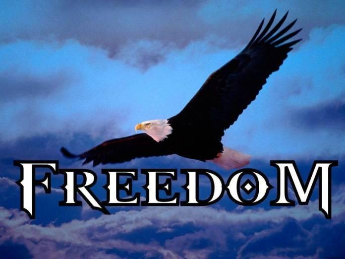 Freedom-Mangalia1