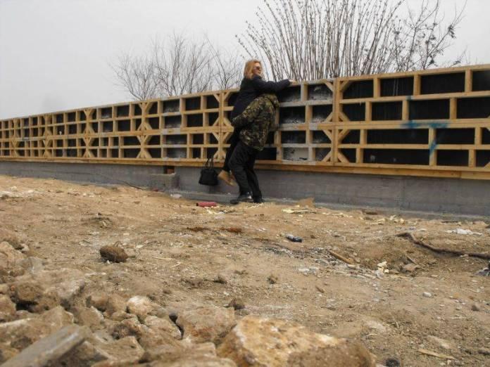 zidul-mangalia1