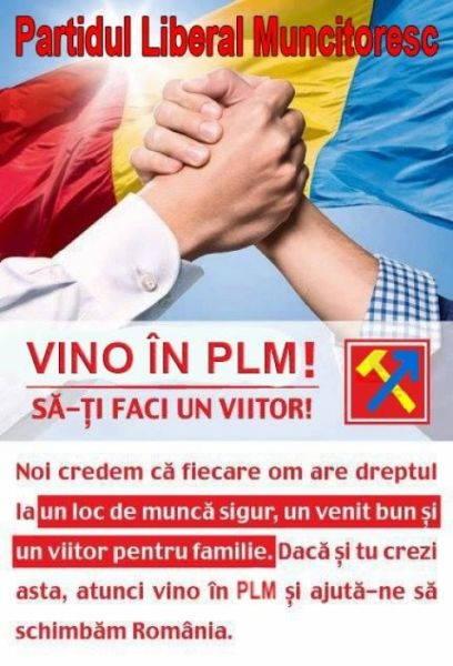 plm_afis