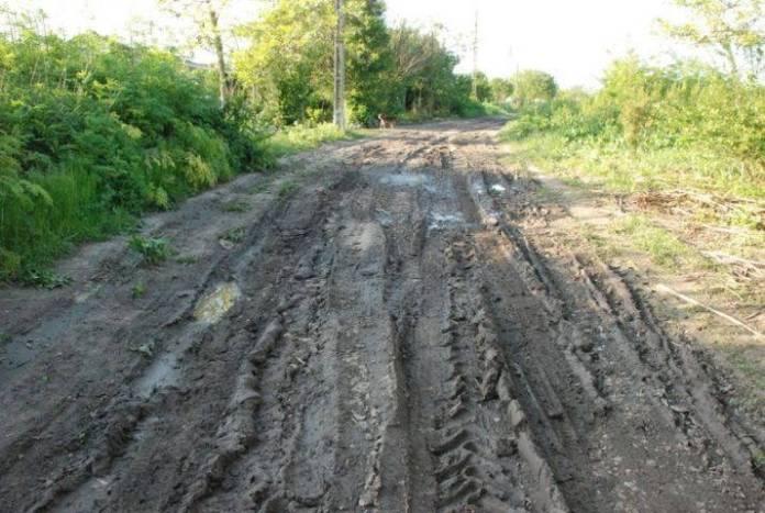 drumul-limanu-hagieni1