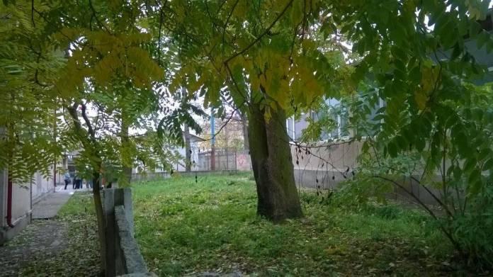 terenul-curtea-scolii-5-sens4