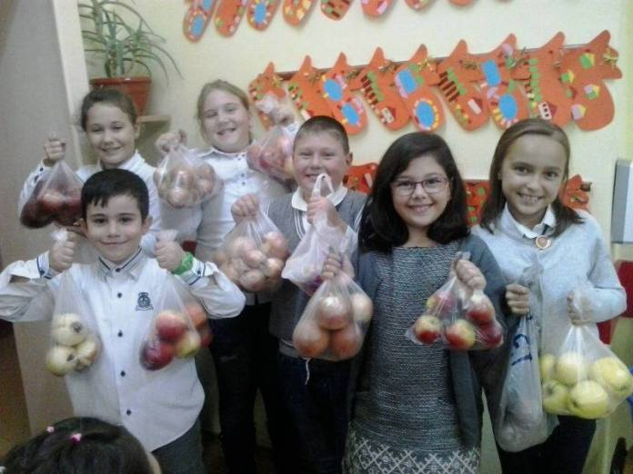 fructe-legume-sc5-2