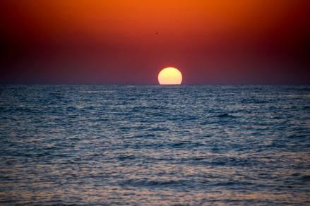 Ziua internațională a Mării Negre1
