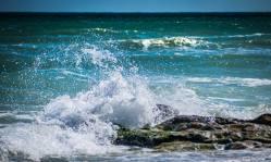 Ziua internațională a Mării Negre2