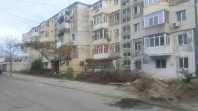 toaletare-pomi-strada-Negru-Voda-Mangalia-04