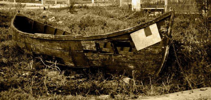 Daniel Pacurici-barca