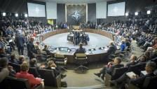 NATO Summit.