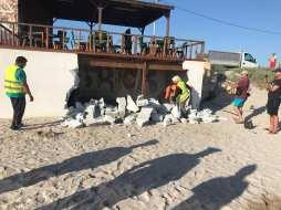 demolare-zid-terasa-dig-mangalia2