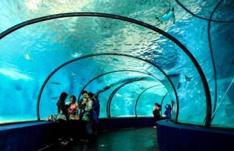 tunel-sub-apa-parc-arheologic-subacvatic