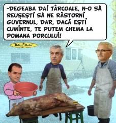 pomana-porcului-mihai-matei