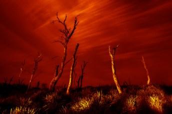 Catalin Anastase Light Painting Landscape-09