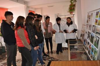 Liceul_Cobadin-targ-educational-9