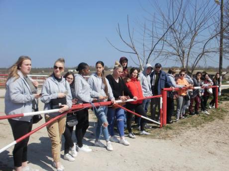 copii-din-județul-Constanța-au-vizitat-Herghelia-Mangalia-09