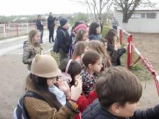 copii-din-județul-Constanța-au-vizitat-Herghelia-Mangalia-18