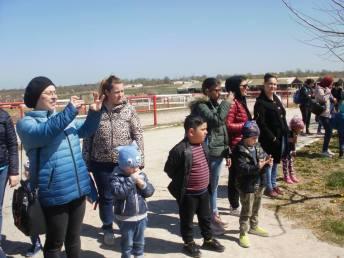 copii-din-județul-Constanța-au-vizitat-Herghelia-Mangalia-21