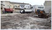 igienizare-garaje-muncitorului14