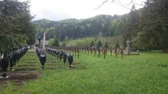 Cimitirul Internațional al Eroilor Valea Uzului-Cruci profanate