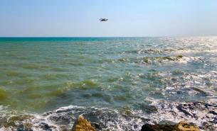 Marea la Mangalia - Marcel Almajanu7