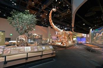 Perot-Museum-interior