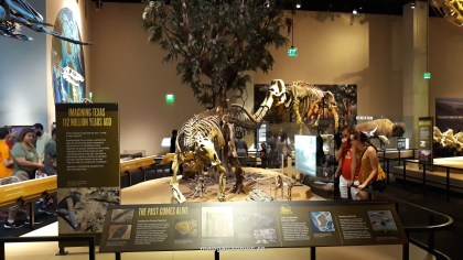 Perot Museum of Nature and Science din Dallas (48)